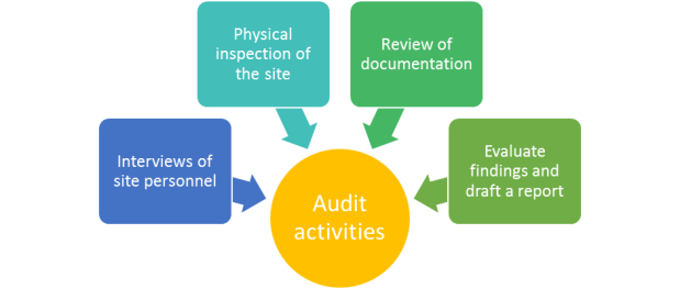 audit activities